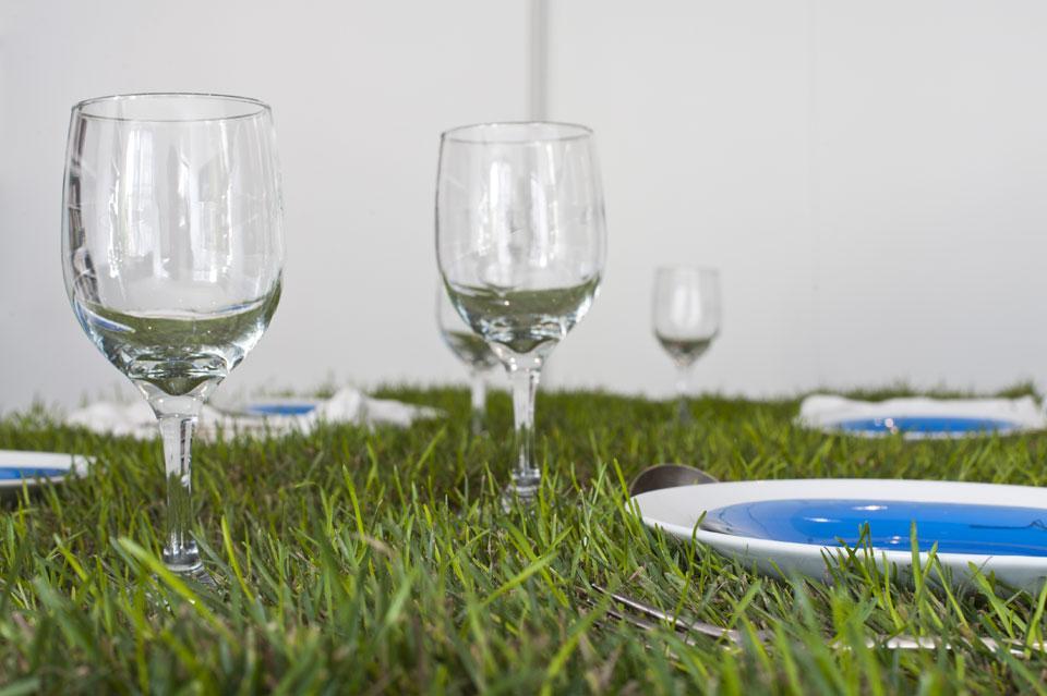 Pic nic di primavera, sul tavolo erboso di Cornelissen.