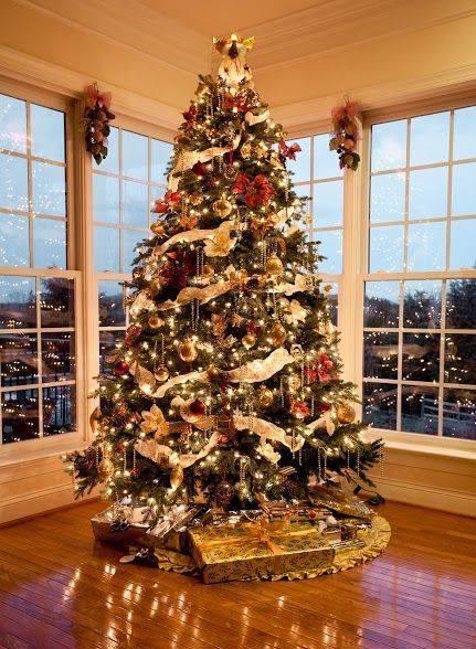 Alberi Di Natale Bellissimi Immagini.Decorazioni Naturali Fai Da Te Per L Albero Di Natale
